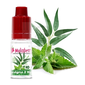 Eucalyptus & Mint 10ml
